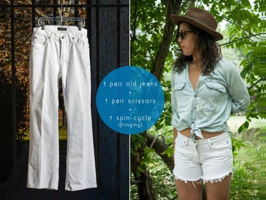 DIY-Short-Blog